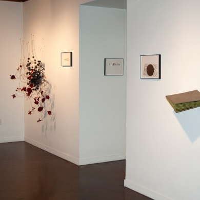 Installation View: Background: Architecture of a Scent: Cinnamon - Foreground: Layers-more like chapters